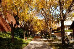 my school!!! #BIOLA university ! :)