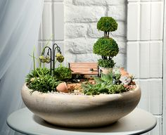 20 Wonderful Ideas To Decorate Your Garden The Effective Pictures We Offer You About Miniature Garden zen A quality picture can tell you many things. You can find the most beautiful pictures that can Mini Fairy Garden, Fairy Garden Houses, Miniature Plants, Miniature Fairy Gardens, Dish Garden, Garden Pots, Vegetable Garden, Succulent Terrarium, Succulents Garden
