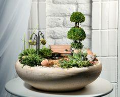 miniature garden | Flickr - Photo Sharing!