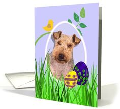 Easter Card featuring a Welsh Terrier card