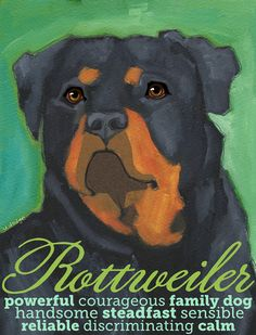 Rottweiler No. 1 - set of six blank note cards with coordinating envelopes on Etsy, $15.00