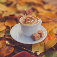 "coffee-tea-and-sympathy: ""Sweet october by Marika "" Coffee And Books, I Love Coffee, Coffee Break, Sweet Coffee, Coffee Cafe, Coffee Drinks, Coffee Shop, Kefir Benefits, Chocolate Coffee"