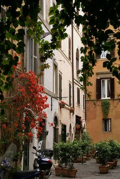 Rome, Via degli Spagnoli | Flickr - Photo Sharing!