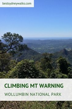 Mount Warning, otherwise known as Wollumbin, is an iconic mountain in the Byron Bay Hinterland. The walking track to the summit is a challenging climb through bushland. The Byron, Byron Bay, Australian Holidays, Australia Travel, Places To See, Climbing, National Parks, Track, Hiking
