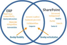 Implementing SharePoint As a Sole Platform For Intranet, Extranet & Internet