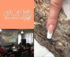 BrillBird Lipstick, Nails, Beauty, Finger Nails, Lipsticks, Ongles, Beauty Illustration, Nail, Nail Manicure