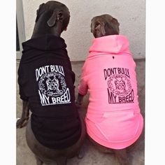 Dont Bully My Breed Dog Hoodie