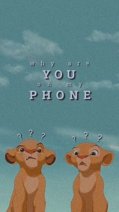why are you on my phone wallpaper why are you on my phone Iphone Wallpaper Quotes Funny, Disney Phone Wallpaper, Cartoon Wallpaper Iphone, Iphone Wallpaper Tumblr Aesthetic, Cute Cartoon Wallpapers, Cute Patterns Wallpaper, Cute Wallpaper Backgrounds, Pretty Wallpapers, Screen Wallpaper