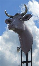Zippy discusses the relationship of mind and body with just a purple cow head - located north of Waynesboro.