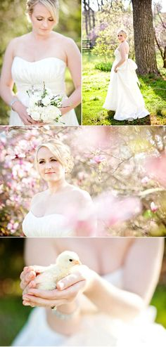 Cute spring / Easter wedding with chicks!  photographed by Katelyn James Photography