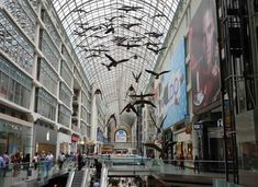 eaton center downtown toronto things to do in toronto Stuff To Do, Things To Do, Downtown Toronto, Ontario, Street View, City, Places, Travel, Things To Make