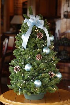Fresh Christmas Tree Philippines.27 Best Christmas Tree Planter Decor Images Tree Planters