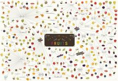 The Various Varieties of Fruits infographic by popchartlab. Foodie Gardeners: What are you growing?