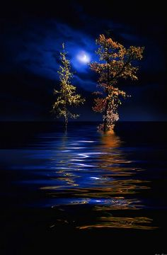 I Love Pictures,Enjoy My Beautiful World. Beautiful World, Beautiful Images, Shoot The Moon, Moon Magic, Moon Art, Moon Moon, Blue Moon, Science And Nature, Stars And Moon