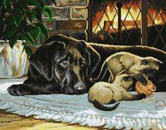Dog - Labrador Retriever and cats