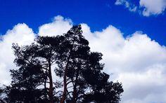 El cielo de Valonsadero