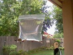 Does this really work? Keep Flies away from your BBQ or your back door. What you will need: A clear plastic sandwich bag. 2 cups of water. A bottle of lime juice. 2 teaspoons of salt. Two or three paper clips And some shiny pennies. Keep Flies Away, Get Rid Of Flies, Outdoor Spaces, Outdoor Living, Outdoor Decor, Diy Garden, Home And Garden, Life Hacks, Ideias Diy