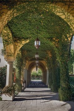 Castle House, Castle Rooms, Old Money, Nature Aesthetic, Beautiful Architecture, Green Architecture, Beautiful Buildings, My Dream Home, Future House