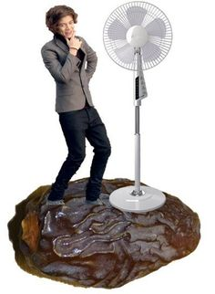 Harry on a date with a fan!!!<< this fandom...