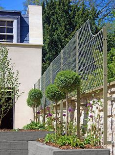 Solid, weatherproof English wirework wall #garden #trellis beautifully extends this attractive garden wall creating a stylish heritage look for training climbing plants such as honeysuckle, clematis and roses. Seen here in 'pale bark' from Garden Requisites, makers of bespoke trellis, wirework, metal porches, gazebos and gates. These wall-top panels and fences come in a variety of finishes and shapes, made to measure and shipped worldwide from Bath, England…