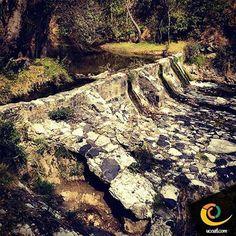 Riachuelos pequeños, forman grandes ríos #ecoturismo #naturaleza #ucoatl #tlaxcala #vive_mexico