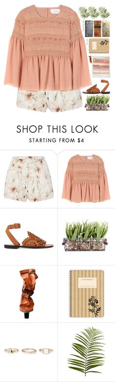 """Untitled #962"" by chantellehofland ❤ liked on Polyvore featuring Haute Hippie, See by Chloé, Chloé, Aesop, Warehouse and Pier 1 Imports"