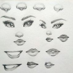 Drawing - Practice Drawing Eyes Nose and Lips — Steemit