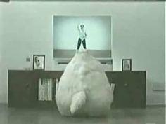 Fat cat dancing on Vimeo