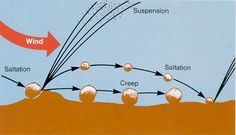sand dune diagram | Figure: Saltation, Creep and Suspension