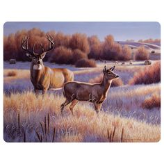 """The Deer Tempered Glass Cutting Board features tempered glass with deer scene artwork. Resists stains, heat, bacteria and odors. Measures 12""""W x 1""""D x 16""""H. ~"""