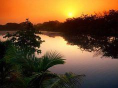 Carmelita project on the Belize River, Cayo District, Belize