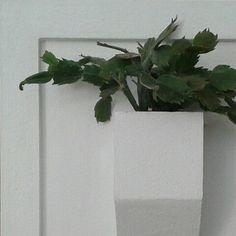 Wall planters,interiordesign,homedecor,decoration,minimal