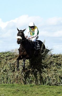 April 2015 - Aintree - Many Clouds stormed to victory in the Grand National under Irish jockey Leighton Aspell, Horse Racing Uk, Horse Racing Books, Horse Racing Betting Tips, Racing News, Many Clouds, Horse Galloping, Horse Fly, Sport Of Kings, Racehorse