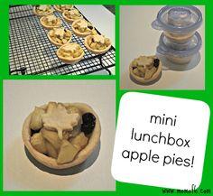 Mini Lunchbox Apple Pies