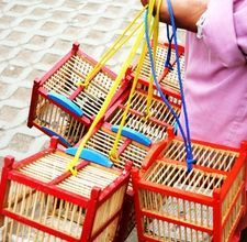 How to Make a Wooden Bird Cage: By Liz Tomas. Building a wooden bird cage is perfect for those who want to customize the cage. Make a bird cage that fits your wants with your bird's needs. There are several different types of cages that can be made with wood. Think about the type of bird that will go into the cage and where the cage will be placed. Wood for a bird cage should never be painted, as most paint is toxic to birds.1  Create a plan for the bird cage. Will this be a hanging cage or…