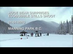 Samsung and the bear. Amusing TVC.