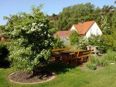 Gemütliche Grillecke im Garten der Ferienwohnungen Tannengrund auf der Insel Usedom