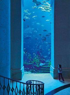 Atlantis ~ The Palm in Dubai #dubai #uae  http://dubaiuae.co/DubaiTravelHotels