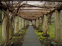 The Filberg Heritage Lodge and Park offers a beautiful nine acre setting with several unique features such as the arbour.