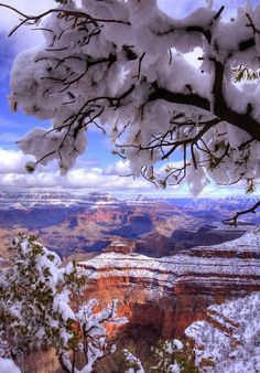 ✔ The Grand Canyon in Winter