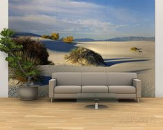 Desert Plants in White Sands National Monument, New Mexico, USA Wall Mural – Large at AllPosters.com