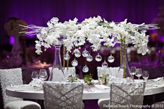 Centerpiece design white Phalaenopsis Orchids with green hanging Amaranthus and Succulents