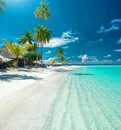 The beauty of Maldives Picture by Happy Friday all by wonderful_places Vacation Places, Dream Vacations, Vacation Spots, Places To Travel, Places To Visit, Vacation Travel, Beach Travel, Luxury Travel, Visit Maldives