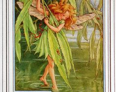Stitchwort Flower Fairy Vintage Print c.1927 by FlowerFairyPrints