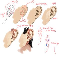 kelpls: UMM PEOPLE ASKED ABOUT NOSES AND EARS SO...