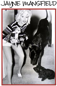 Jane Mansfield with her dogs, Many people are not aware that Mariska Hargitay of Law & Order SVU is Jane Mansfields daughter. See the likeness now?