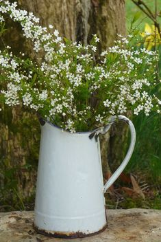 Enamel pitcher ~ Can one ever get enough flowers and enamelware for the house. <3