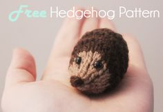 Free toy knitting pattern baby hedgehog @Abby Christine Bostic Looks like you need to learn to knit! Crochet Hedgehog, Baby Hedgehog, Baby Knitting Patterns, Knitting Toys, Easy Knitting, Loom Knitting, Crochet Toys, Knitting Projects, Knit Crochet