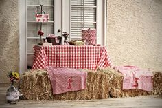 country themed bridal shower