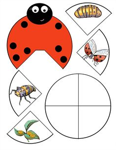 lapbook lapbook creativos lapbook ideas lapbook templates Source by Lap Books, Lapbook Templates, Lady Bug, Grouchy Ladybug, Life Cycle Craft, Ladybug Crafts, Bugs And Insects, Life Cycles, Book Making